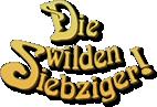 Die wilden Siebziger (That '70s Show)